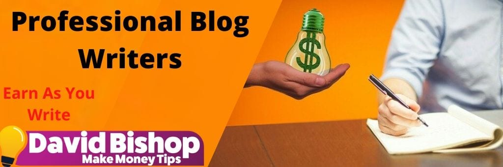 Professional Blog Writers