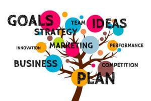 making things happen by setting goals, strategy business plan etc.