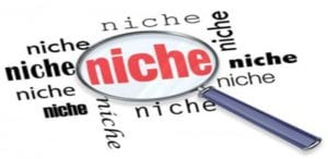 viewing your niche and coming up with one for your business.