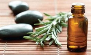 plant converting to oil products for health benefits