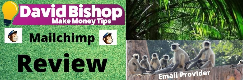 Mailchimp Review