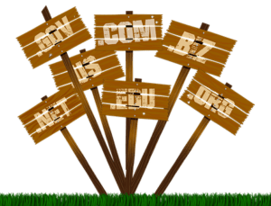 Buying a domain for your website