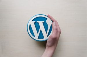 building your website on a WordPress Theme