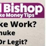 Does SEnuke Work