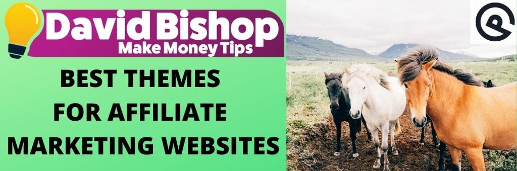 Best Themes For Affiliate Marketing Websites