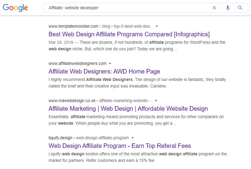 Google search on Affiliate website developer