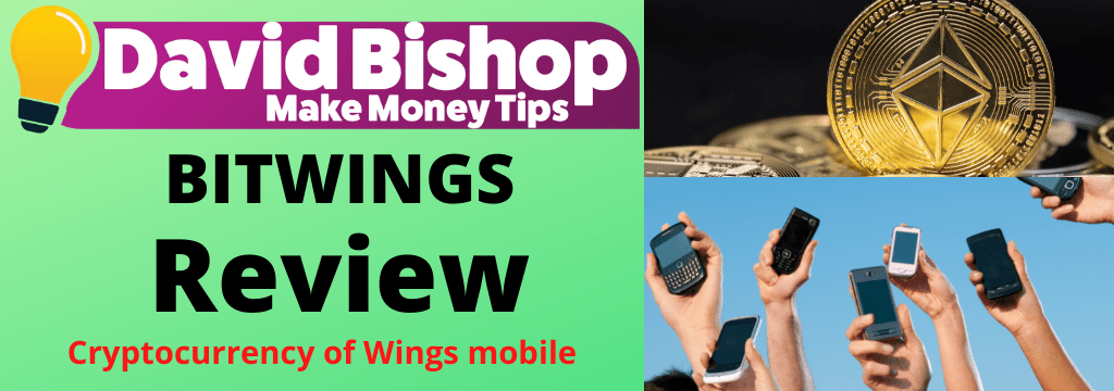 BitWings Review