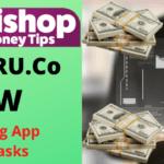 MONEYGURU.Co.Review